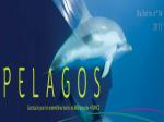 bulletin_pelagos_2017.png