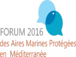 forum-2016-amp.png