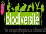 logo-afb.png